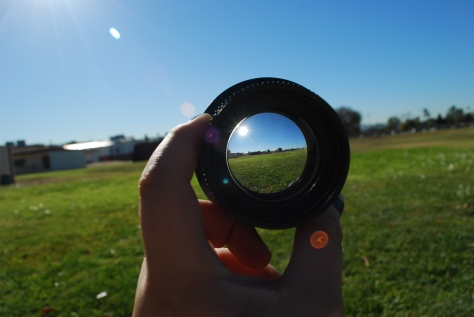 Through the Looking Glass- Fields