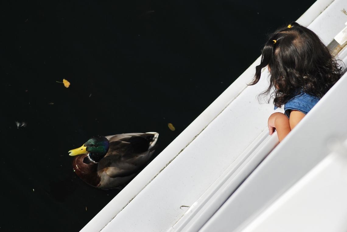 Look Mama, a Ducky!