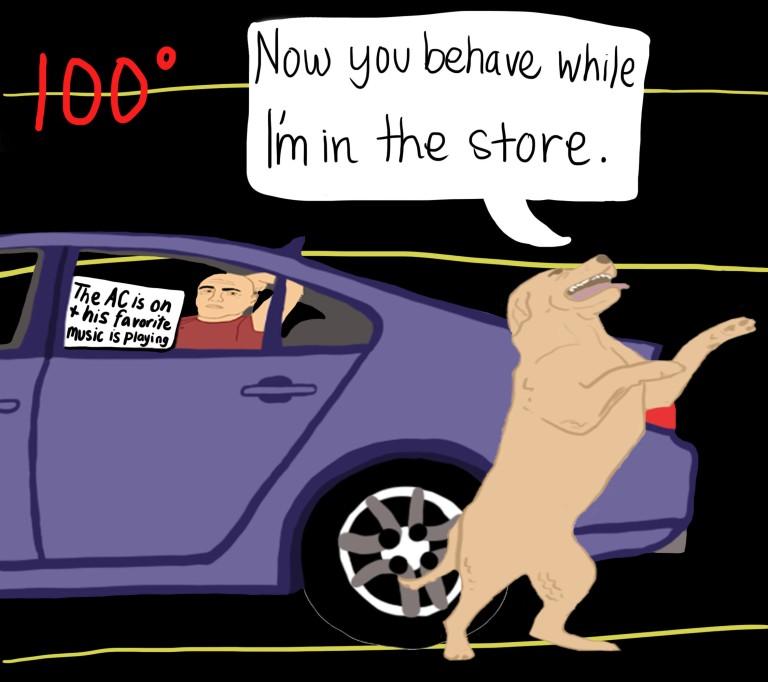 10-7-16-dog-law